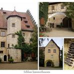Schloss in Sommerhausen
