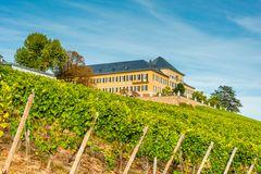 Schloss Johannisberg 05