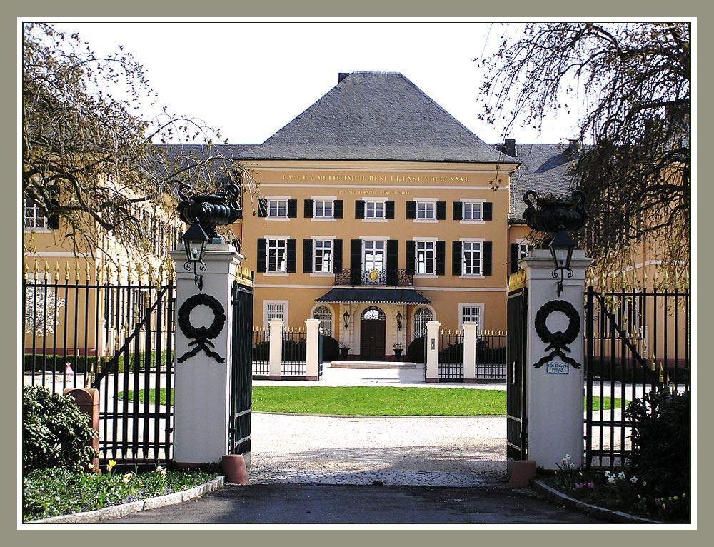 Schloss Johannisberg/Rheingau