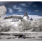 Schloss Läcko (2)