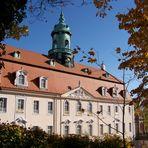Schloss Lichtenwalde V