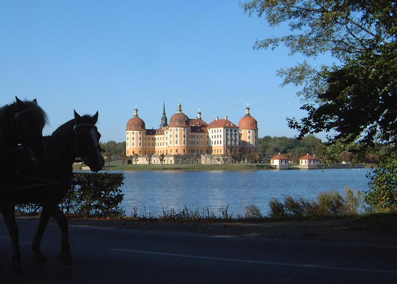 Schloß Moritzburg-Herbst-01