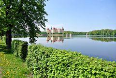 Schloss Moritzburg III