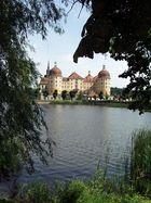 Schloß Moritzburg-Sommer