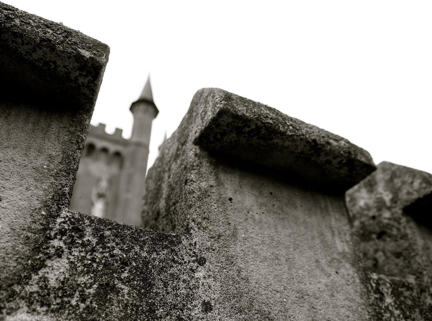 Schloss Moyland #3