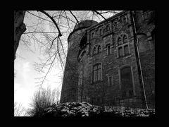Schloss Mylau 03