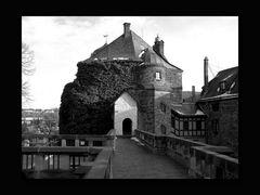 Schloss Mylau 09