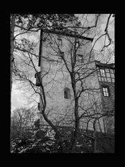 Schloss Mylau 10
