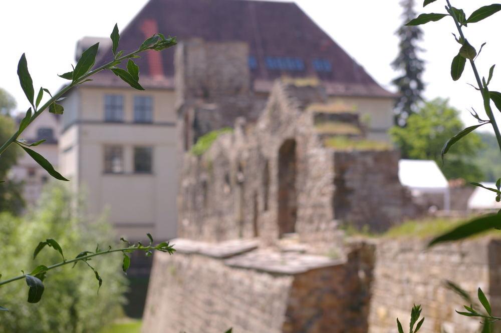 Schloss Neideck in Arnstadt