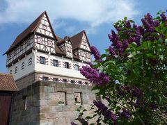 Schloss Neunhof, 01.Mai 2011