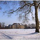 Schloss Oranienbaum im Winter