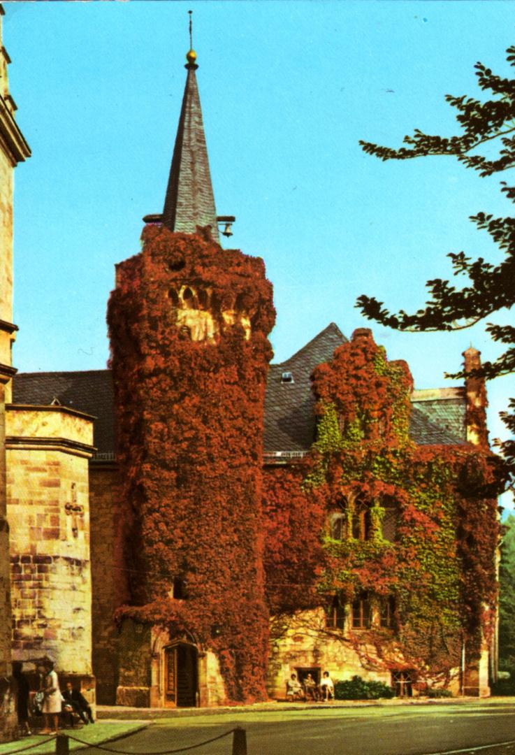 Schloß Reinhardsbrunn Thüringen Friedrichroda schöner Wein Bild 1
