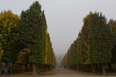 Schloss Schönbrunn, Parkanlage im Herbst
