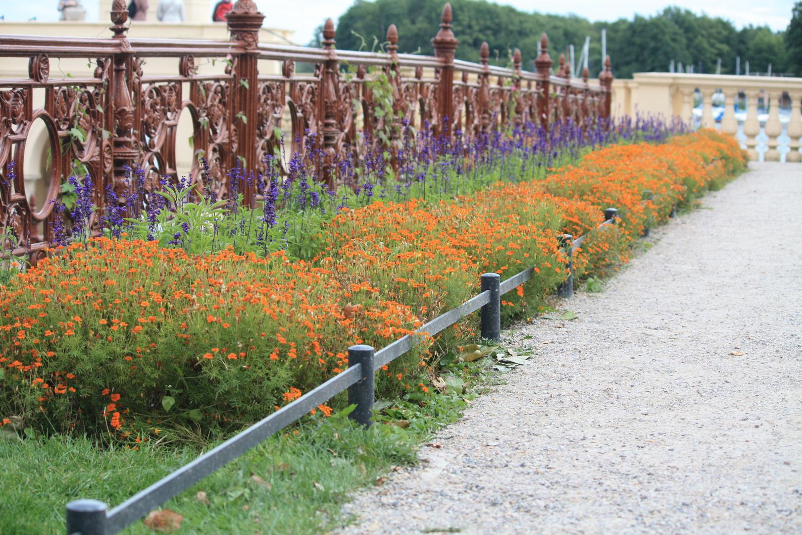 Schloss Schwerin Garten Foto Bild World Grün Schloss Bilder