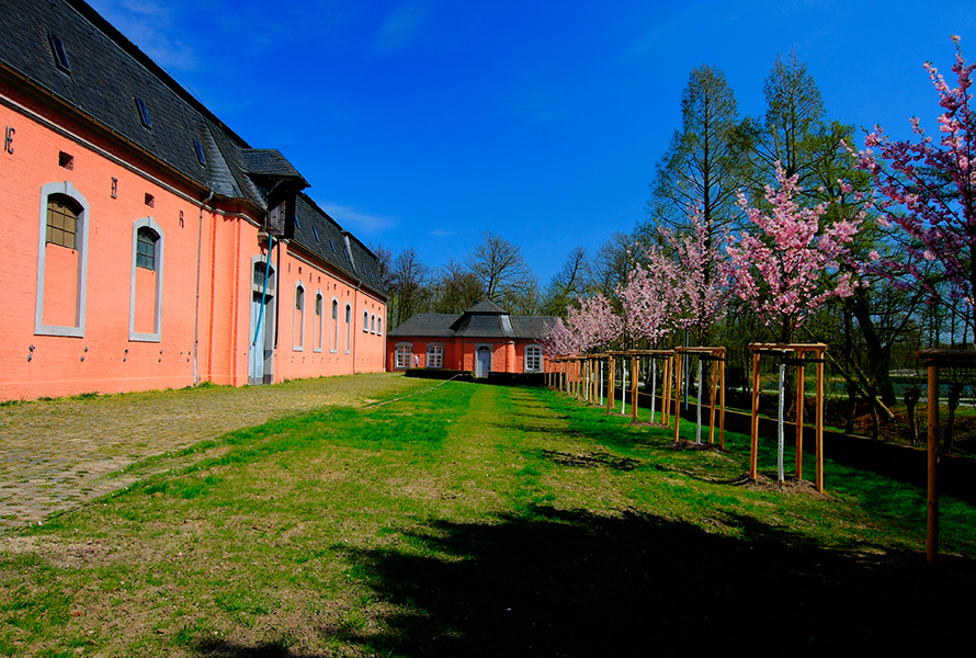 Schloss Wickrath (1)