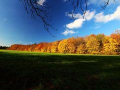 Schloßberg im Herbst