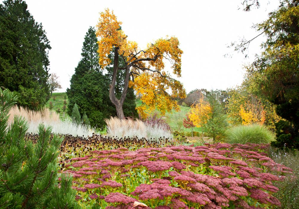 Schlossgarten in Karlsbrunn
