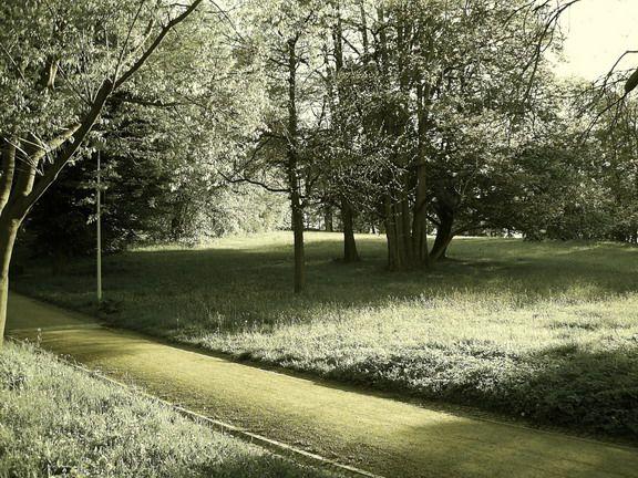 Schlosspark Altenburg