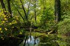 Schlosspark Dennenlohe - Komm und vergiss die Zeit ...