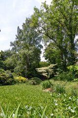 Schlosspark Dennenlohe - Nr. 10