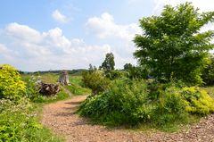 Schlosspark Dennenlohe - Nr. 4
