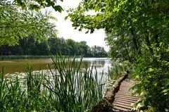 Schlosspark Dennenlohe - Nr. 7