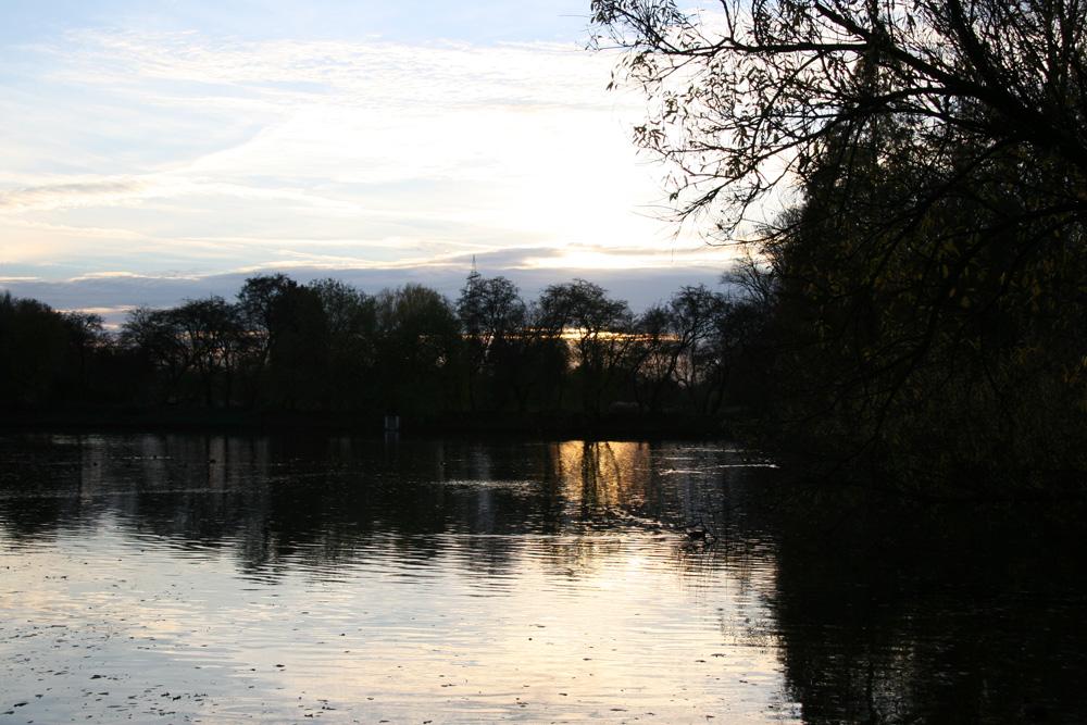 Schlosspark Herten Teich