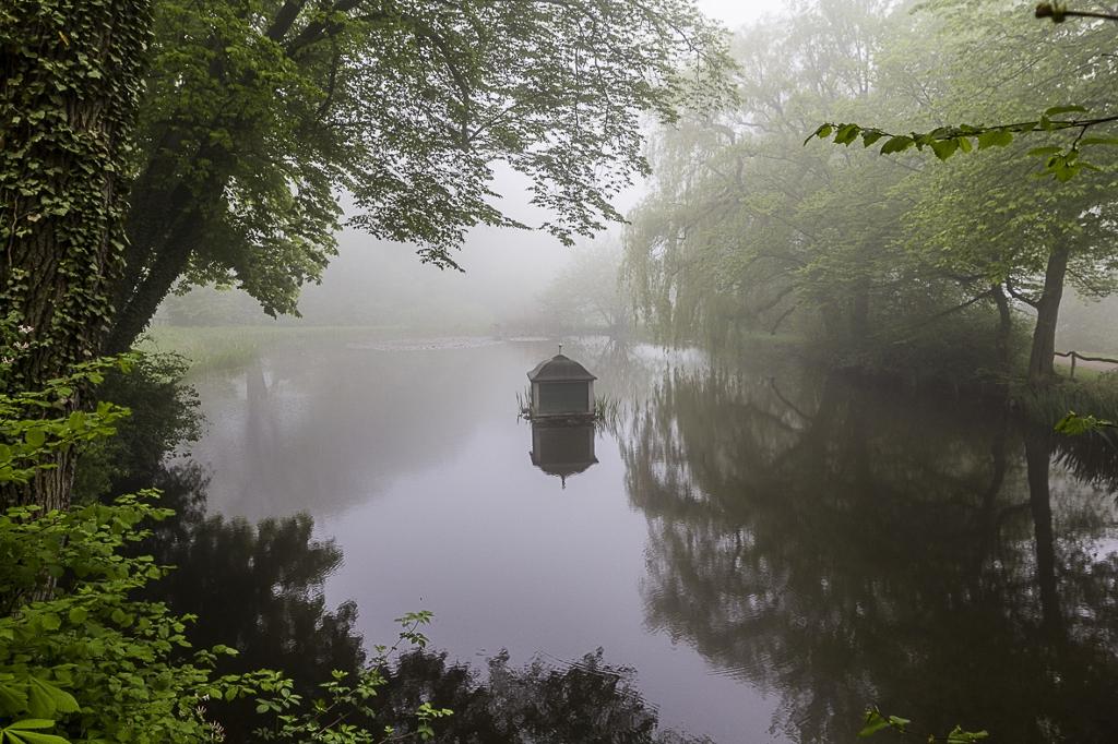 Schlosspark im Frühnebel 1