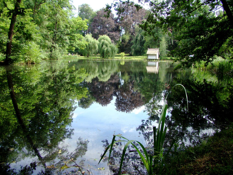 Schlosspark Lübbenau