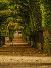 Schlosspark Schoenbrunn