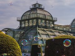 Schlosspark Schönbrunn - Palmenhaus