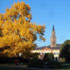 Schlosspark Weinheim fotografiert von Paul