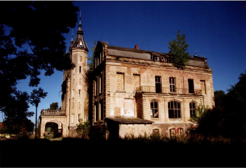Schlossruine Mallin