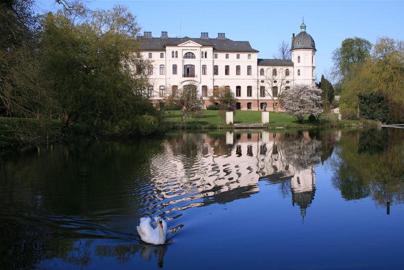 Schlossschwan