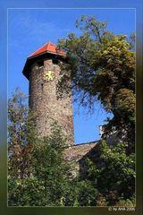 Schlossturm zu Auerbach