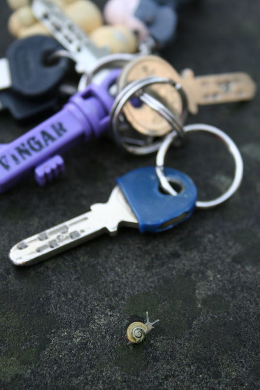 schlüssel vergessen?