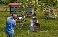 Schlussfoto vom Einfangen eines Bienenschwarms!