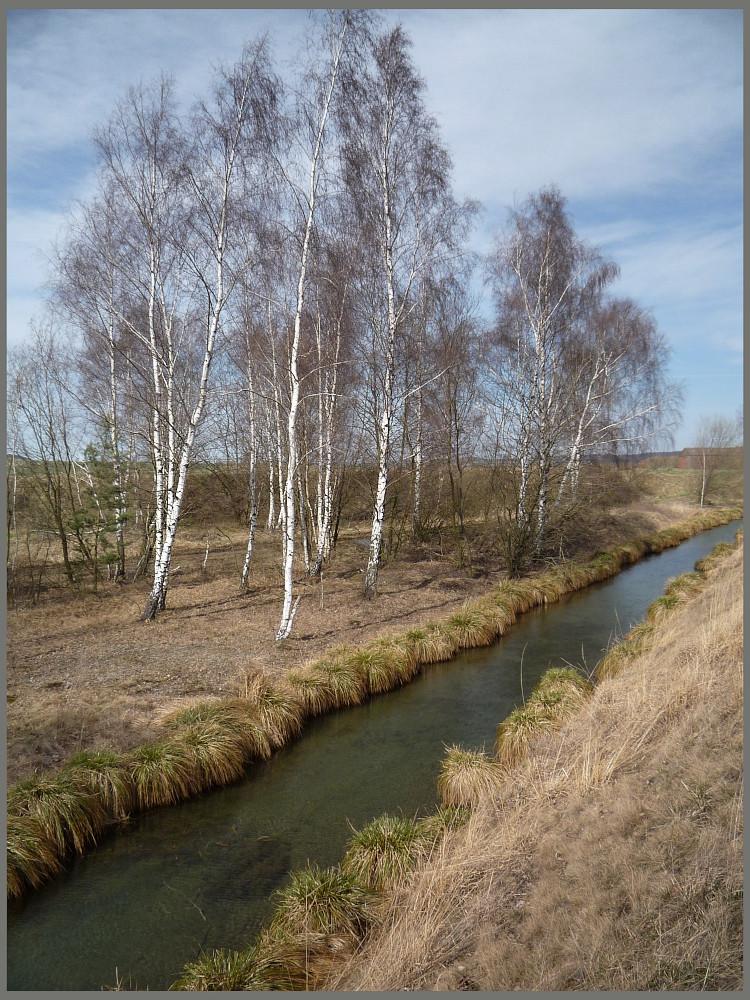 schmaler Kanal parallel zur Innerste