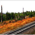 Schmalspurbahn / Brocken