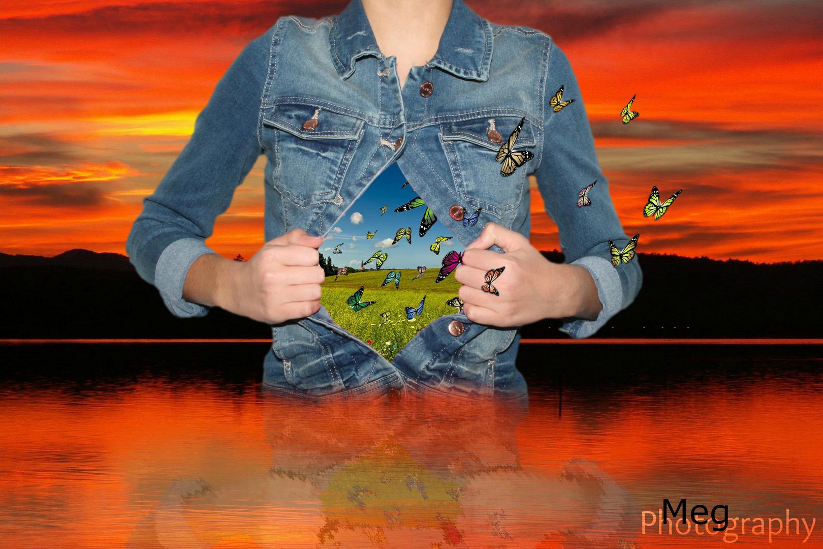 *Schmetterlinge im Bauch..* Foto & Bild | fotomontage, see