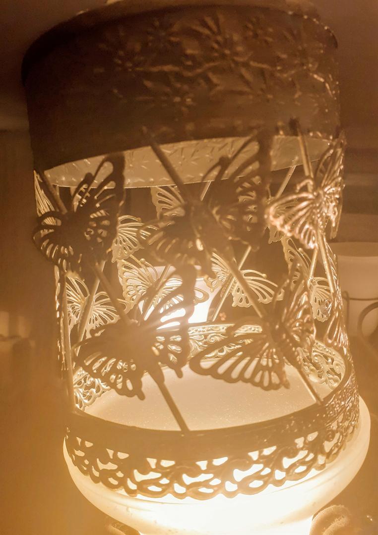 """"""" Schmetterlinge im Licht """""""