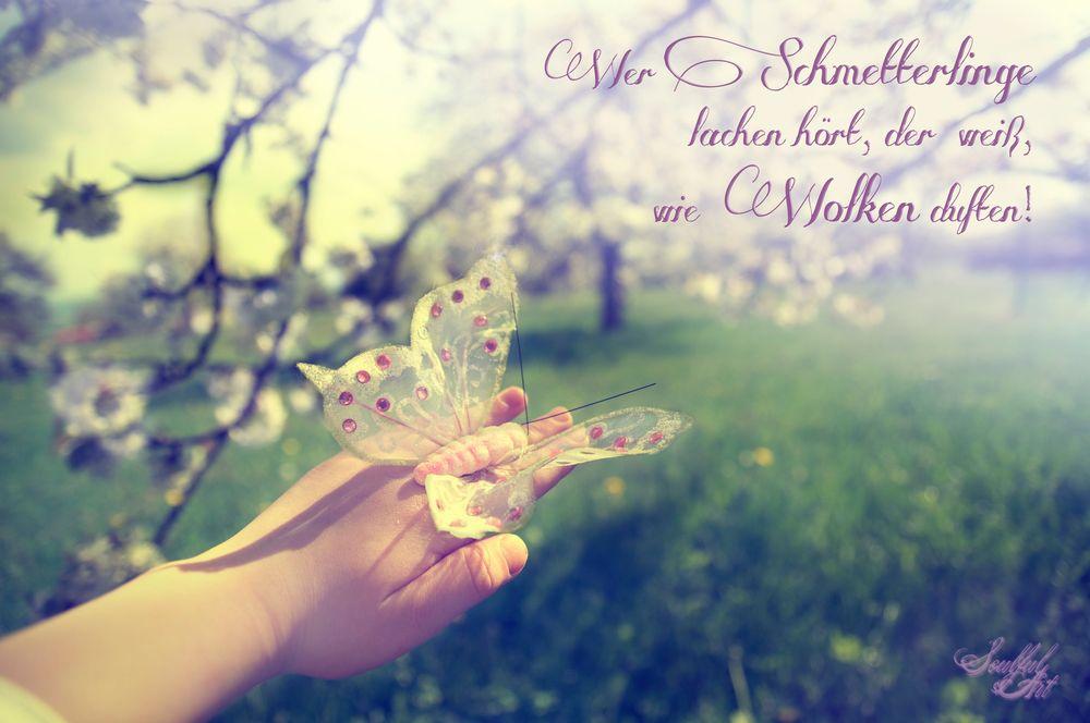 Schmetterlinge und Wolken