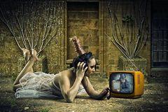 schmidbauer-TV