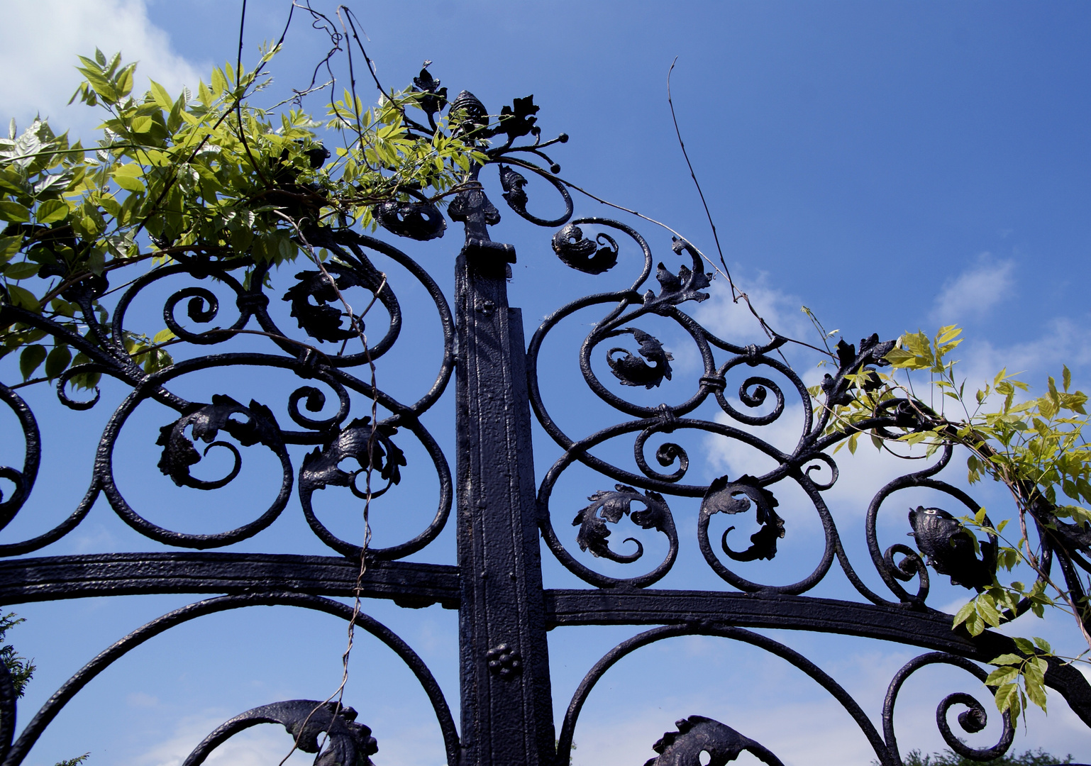 Schmiedeeisernes Tor zur Gärtnerei bei Schloss Wiligrad