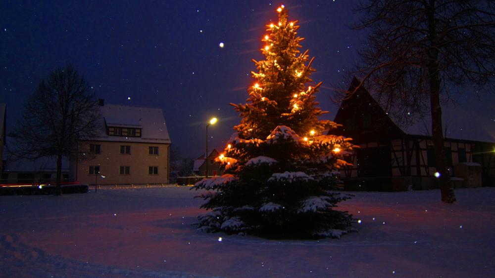 schnaittach weihnachtsbaum b rgerweiher foto bild jahreszeiten winter natur bilder auf. Black Bedroom Furniture Sets. Home Design Ideas