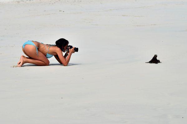 strandnixen bilder