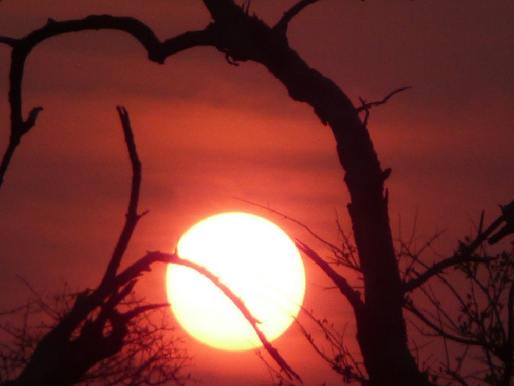 Schnappschuss Sonnenuntergang im Etosha-Nationalpark