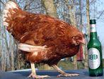 Schnapschuß 100% Bier-Huhn