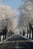 Schnee-Allee