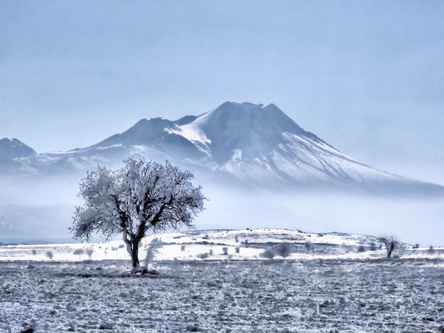 Vulkanischer Winter